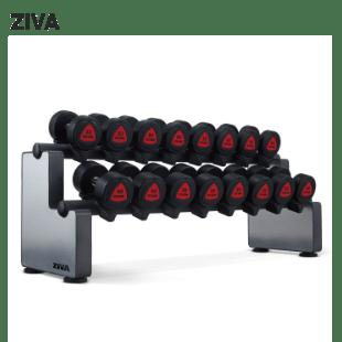 ZIVA 12㎏~50㎏(1~10㎏もあり) ダンベルセット画像